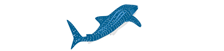 Partner Organization at whaleshark.org